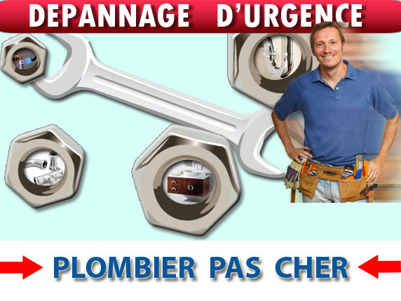 Canalisation Bouchée Montigny le Guesdier 77480